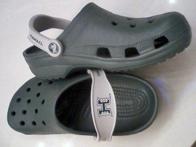 crocs1.jpg